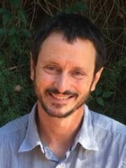 Professor Stuart Phinn