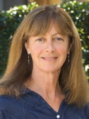 Dr Janet Lanyon