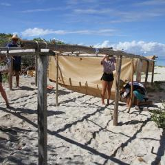 Researchers setting up shade structure for turtle nests