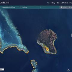 Satelite image of New Caledonia and adjacent reef taken April 2021