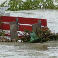 Stormwater rises around a park bench