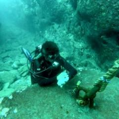 Placing pressure transducers in the inner lagoon of Temae, Moorea. Photo by V. Parravicini